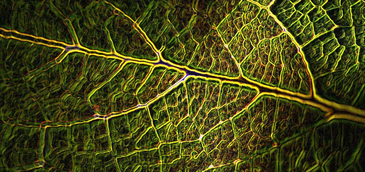 7 ways to turn your lab greener