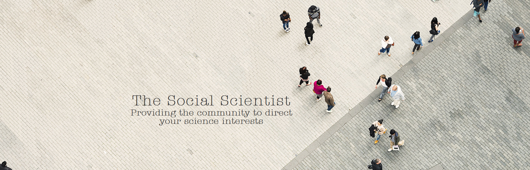 The Social Scientist